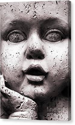 Angel Face Canvas Print by Dan Holm
