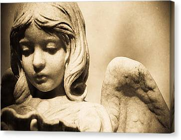 Angel Holding Clam Shell Canvas Print by Diane Payne