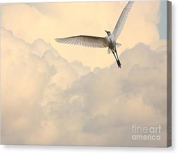 Angel In The Sky Canvas Print by Wingsdomain Art and Photography