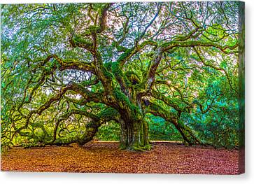 Angel Oak Tree Charleston Sc Canvas Print