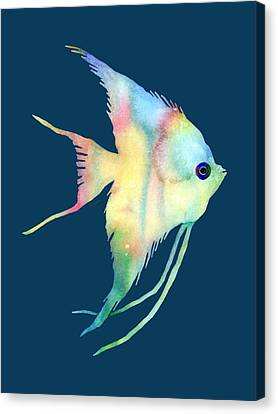 Angelfish I - Solid Background Canvas Print by Hailey E Herrera