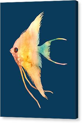 Angelfish II - Solid Background Canvas Print by Hailey E Herrera