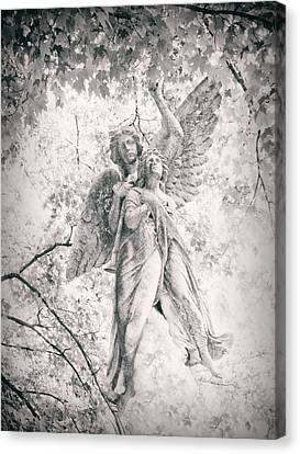 Angelic  Canvas Print by Jessica Jenney