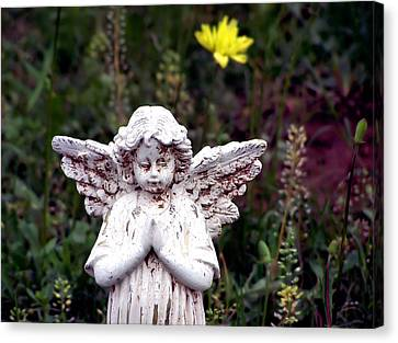 Angelic Canvas Print by Karen Scovill