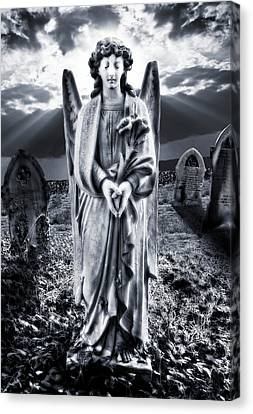 Angelic Light Canvas Print by Meirion Matthias