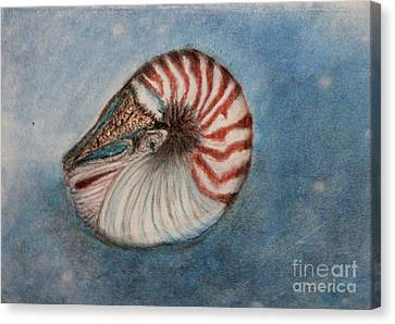 Canvas Print featuring the painting Angel's Seashell  by Kim Nelson