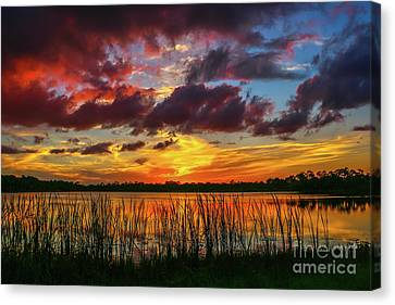 Angry Cloud Sunset Canvas Print by Tom Claud