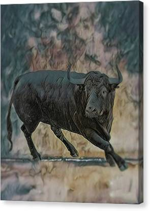 Bulls Canvas Print - Angus by Wishes and Whims Originals By Michelle Jensen