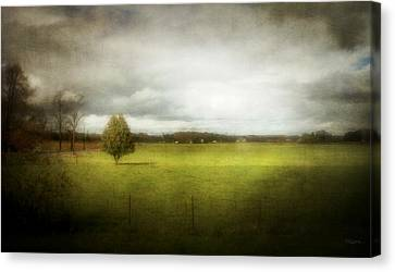 Angustown Pasture Canvas Print by Cynthia Lassiter