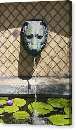 Animal Fountain Head Canvas Print by Teresa Mucha