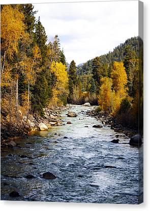 Canvas Print featuring the photograph Animas River by Kurt Van Wagner