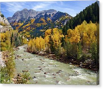 Canvas Print featuring the photograph Animas River San Juan Mountains Colorado by Kurt Van Wagner