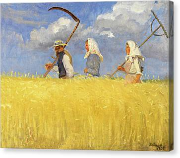 Anna Ancher Harvesters 1905 Canvas Print