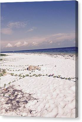 Canvas Print featuring the photograph Anna Maria Island Beyond The White Sand by Jean Marie Maggi