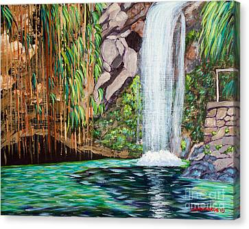 Annandale Waterfall Canvas Print