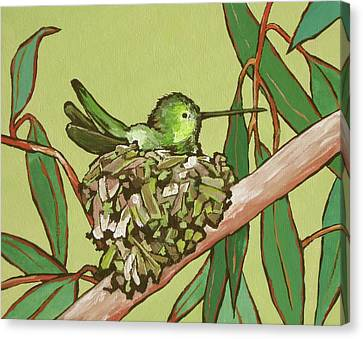 Annas Hummer Canvas Print by Sandy Tracey