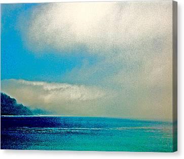 Ano Nuevo Fog 2 Canvas Print by Scott L Holtslander