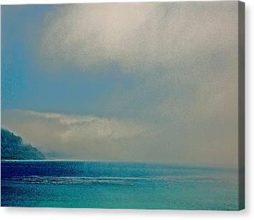 Ano Nuevo Fog  Canvas Print by Scott L Holtslander