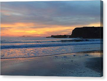 Ano Nuevo Canvas Print by Nep Toon