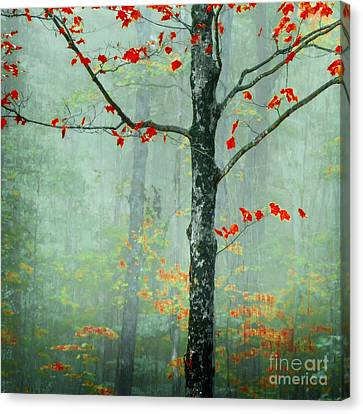 Red Leaf Canvas Print - Another Day Another Fairytale by Katya Horner