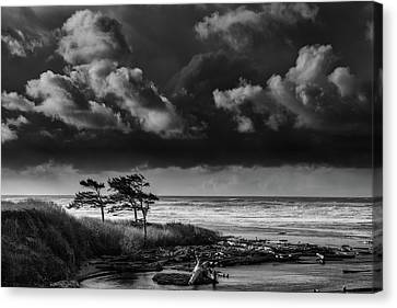 Canvas Print featuring the photograph Another Day At Kalaloch Beach by Dan Mihai