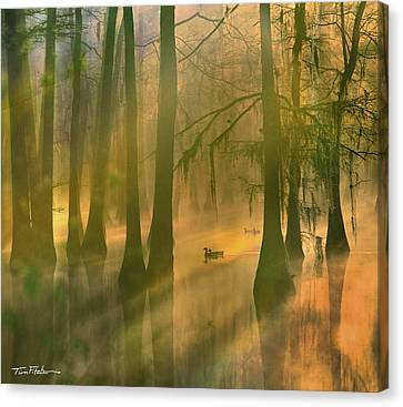 Another Day Canvas Print by Tim Fitzharris