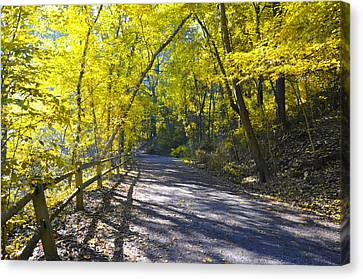 Wissahickon Canvas Print - Another Fall In Philadelphia by Bill Cannon