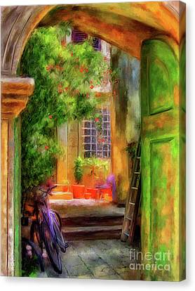 Another Glimpse Canvas Print by Lois Bryan