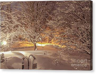 Another Snow Storm 1 Canvas Print