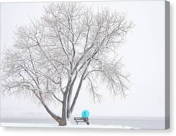 Another Winter Alone Canvas Print