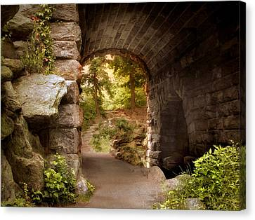 Stone Path Canvas Print - Another World by Jessica Jenney