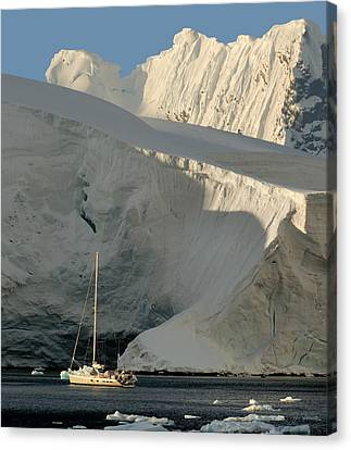 Antarctic No. 7 Canvas Print by Joe Bonita