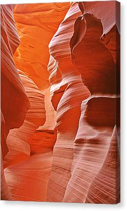 Antelope Canyon - Nature's Art Gallery Canvas Print by Christine Till