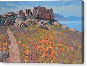 Antelope Island Outcrop Canvas Print