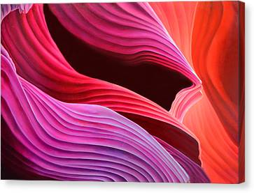 Antelope Waves Canvas Print by Anni Adkins