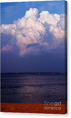 Anticipation Canvas Print by Clayton Bruster