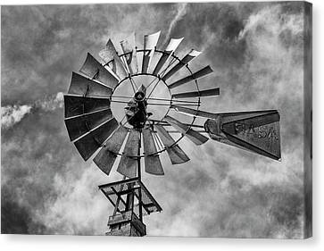 Canvas Print featuring the photograph Anticipation by Stephen Stookey