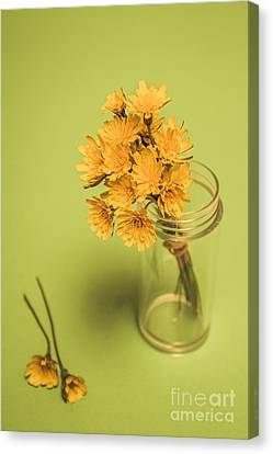 Antique Blooms Canvas Print by Jorgo Photography - Wall Art Gallery