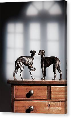 Antique Bronze Greyhound Dogs Canvas Print by Amanda Elwell
