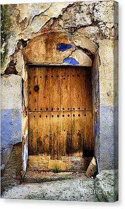 Antique Brown Door Canvas Print by RicardMN Photography