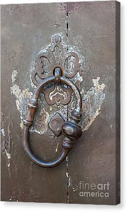 Antique Door Knocker Canvas Print by Elena Elisseeva