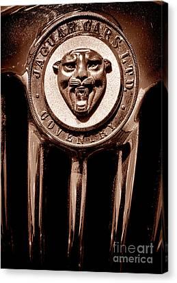 Antique Jaguar Badge And Grille Canvas Print by Olivier Le Queinec