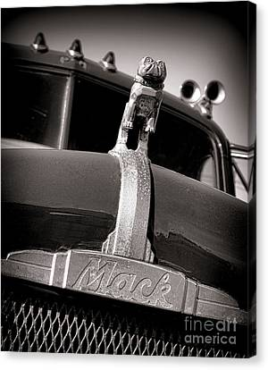 Antique Mack Bulldog Hood Ornament Canvas Print by Olivier Le Queinec