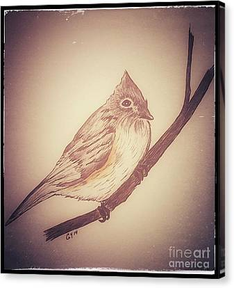 Antique Titmouse Canvas Print by Ginny Youngblood