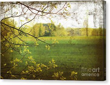 Antiqued Grunge Landscape Canvas Print