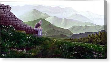 Antonio Atop La Rocca De Monte Calvo Canvas Print by Albert Puskaric