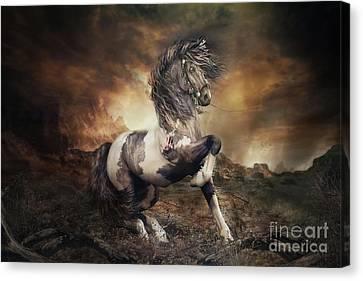 Apache War Horse Landscape Canvas Print