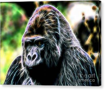 Ape Collection Canvas Print by Marvin Blaine