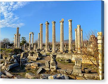 Aphrodisias Canvas Print - Aphrodisias City, Turkey by Ivan Batinic