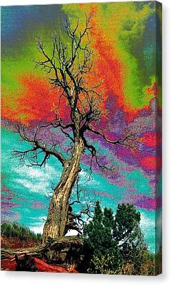 Apocalypse Tree Canvas Print